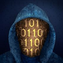 Are Vigilante Hackers a Threat?